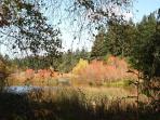 Fall views from Yurt