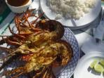 yummy lobster