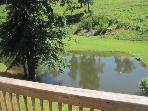 Pond - View from deck of Cabin vacation rental