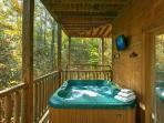 Hot Tub with HDTV