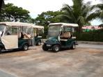 Electric Powered Vehicle (EPV) - Golf Buggy