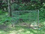 A dog pen in a shady spot if you need to leave your pet at the cabin.