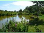Hordle lakes - local fishing with day tickets available