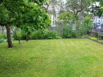 Notre petit jardin et ses arbres fruitiers