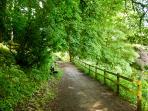 Woodland walk down to Italian Gardens