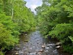 River near the cabin