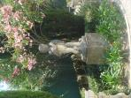 romantisme de notre jardin avec laurier rose