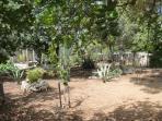 Parte del giardino