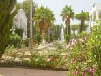 Stunning sub-tropical gardens