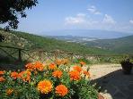 Vista e panorama sulle colline del PRATOMAGNO