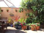 Pretty patio, the owner is a keen gardener