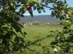 Vue est : le jolie village provençal de Villars...