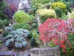 The garden ...