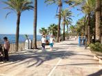 The gardens open onto the promenade