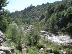 Rivière vue du camping 1