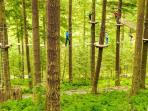Go Ape at Mallards Pike