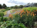 gardens at Gylly beach