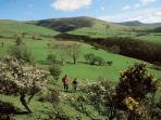 Glyndwr's Way National Trail can be joined from the doorstep