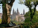 catedral de Santiago de Compostela (Patrimonio de la Humanidad)