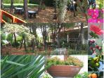 various garden