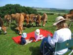 Family picnic at an Historic Scotland old Fort in East Lothian.