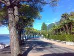 Corniche of Toscolano-Maderno (4 km.) with mediterranean pines 8