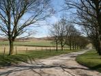 Town Farm Driveway