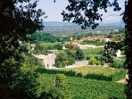View of Property from Path to Menerbes