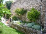 aiula con erbe aromatiche: timo, maggiorana, salvia, santoreggia, melissa, rosmarino...