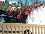 Flowers over the car park