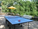 Anyone for table-tennis?