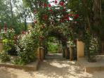 Acceso jardines