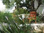 Garden terrace with bbq