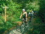 Bring or hire bikes to explore the cycle trails