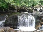 Waterfalls at Campsie Glen, 2 miles from the house