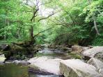 View of the stream from Mallyan Spout, Goatland, Heartbeat Country.