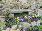 Entrance, flowers in the secadou;