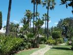 the communal gardens