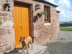 Entrance to the cottage and wee dog'
