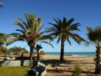 Parques junto a la playa.
