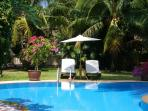 Chill under the Coconut Trees in the Peaceful Tropical Garden