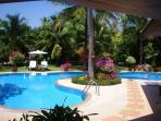 The Beautiful Pool set amongst the Coconut Trees