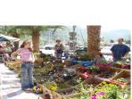 Saturday market in Kotor.