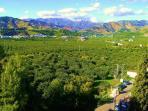Vistas desde las terrazas al Valle Tropical de Río Verde