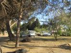 Parking, pinède et terrain de boules