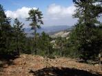 Picturesque view from up in the Troodos Mountains