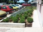 Enterance / Parking Lot