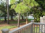 View off back deck.