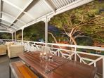 Front verandah with outdoor dining and outdoor lounge. View through poinciana tree, lit at night.
