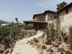 ingresso relais garden cactus